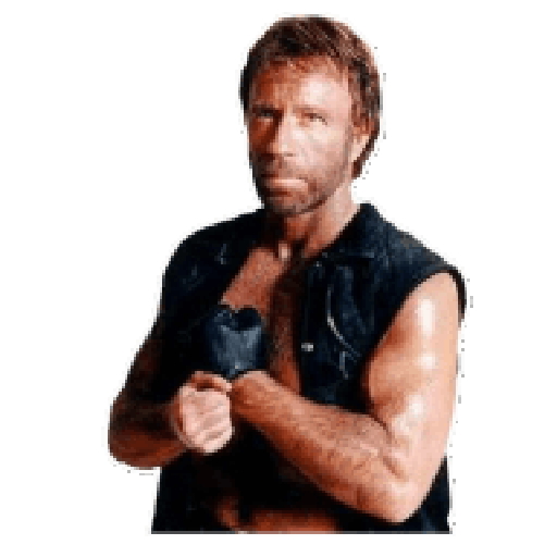 stickers-whatsapp chuck norris