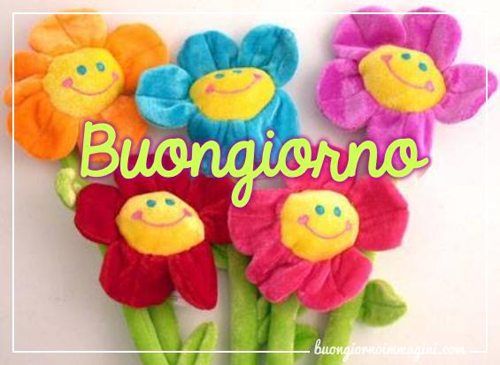 I SALUTI DI FEBBRAIO 2019 - Pagina 3 Fiori_panno_colorati_sorrisi_1548881272