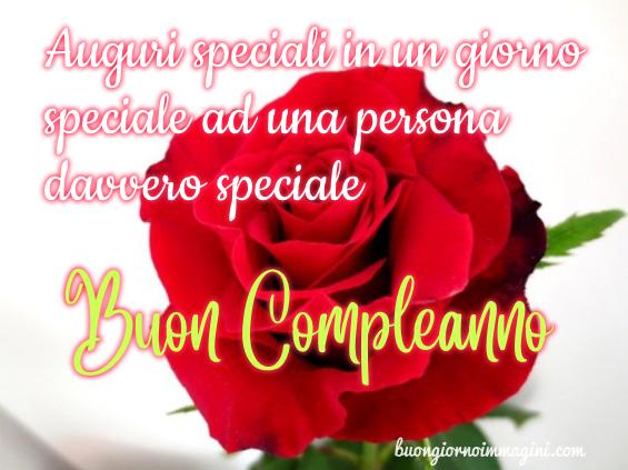 Rosa Rossa Auguri Speciali Ad Una Persona Speciale